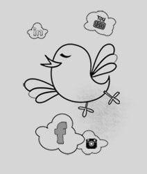 Agentie social media