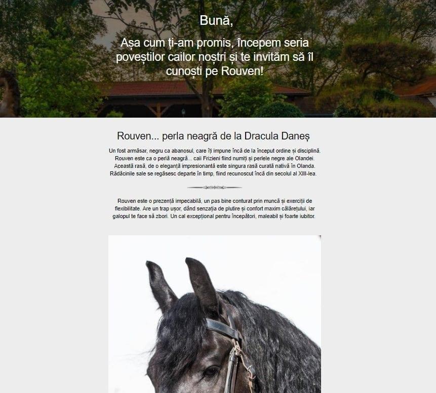 Newsletter Dracula