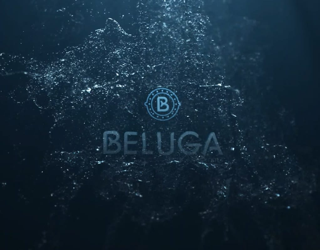 Beluga 5
